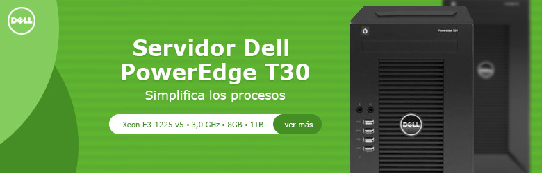 Servidor Dell PowerEdge T30